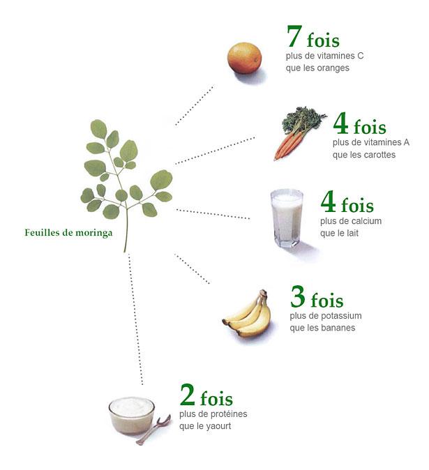 Moringa : valeur nutritive